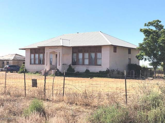 4391 W Webb Road, Elfrida, AZ 85610 (MLS #6058405) :: The Garcia Group