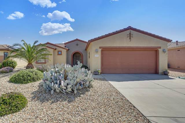 20505 N Sojourner Drive, Surprise, AZ 85387 (MLS #6058419) :: Long Realty West Valley
