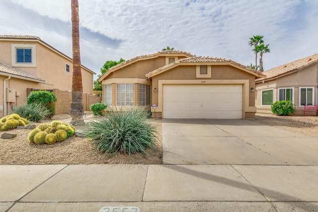 2557 W Gail Drive, Chandler, AZ 85224 (MLS #6058436) :: The Daniel Montez Real Estate Group