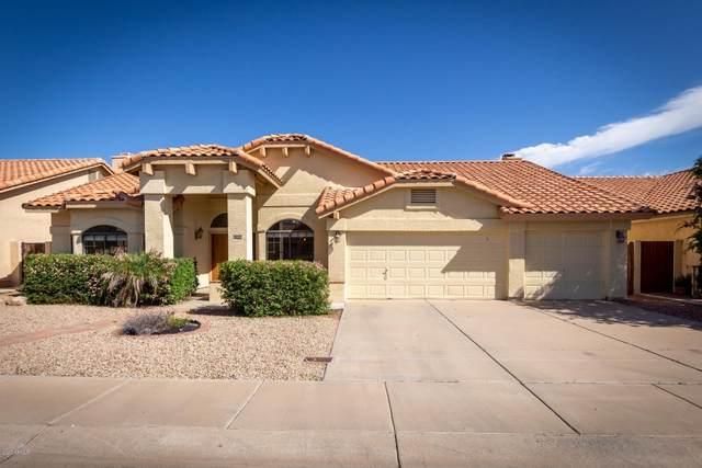 11214 W Sunflower Place, Avondale, AZ 85392 (MLS #6058451) :: Brett Tanner Home Selling Team