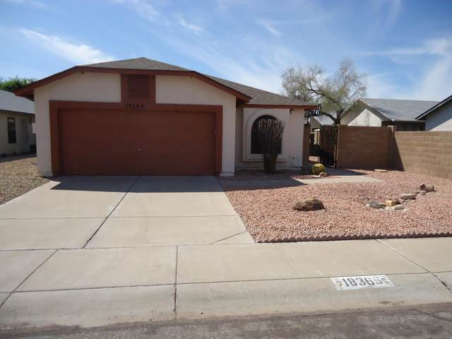 18366 N 87TH Lane, Peoria, AZ 85382 (MLS #6058453) :: Santizo Realty Group