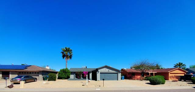 3832 E Bloomfield Road, Phoenix, AZ 85032 (MLS #6058468) :: Brett Tanner Home Selling Team
