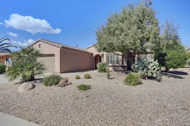 19710 N Tolby Creek Court, Surprise, AZ 85387 (MLS #6058471) :: Brett Tanner Home Selling Team