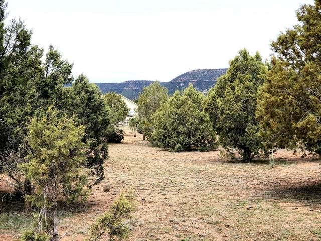 TBD W Sunflower Drive, Payson, AZ 85541 (MLS #6058489) :: Brett Tanner Home Selling Team