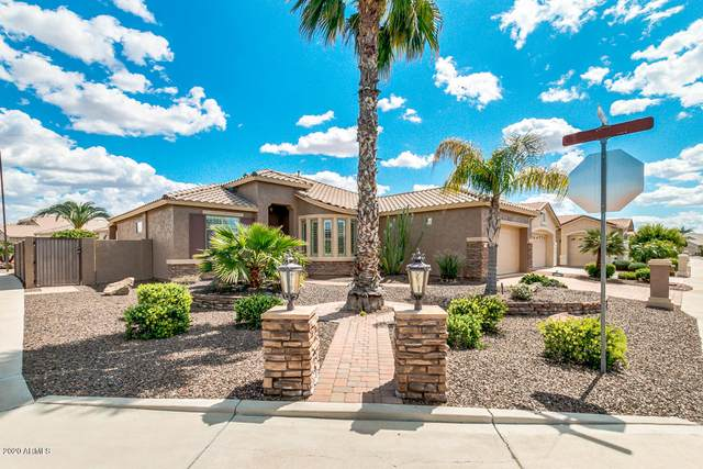 17825 N Javelina Drive, Surprise, AZ 85374 (MLS #6058512) :: Nate Martinez Team