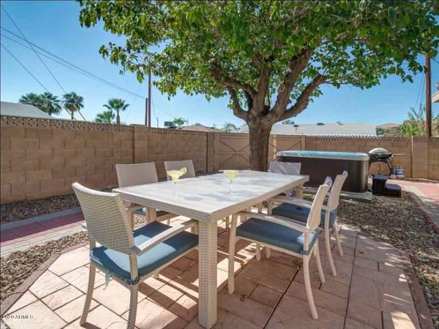 8113 E Amelia Avenue, Scottsdale, AZ 85251 (MLS #6058550) :: Conway Real Estate