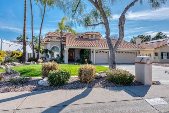 7737 E Aster Drive, Scottsdale, AZ 85260 (MLS #6058553) :: Conway Real Estate