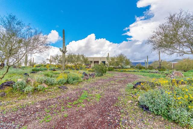 45205 N 18TH Street, New River, AZ 85087 (MLS #6058564) :: Brett Tanner Home Selling Team