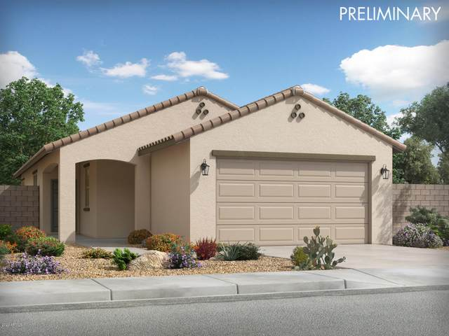 14219 W Voltaire Street, Surprise, AZ 85379 (MLS #6058596) :: The Daniel Montez Real Estate Group