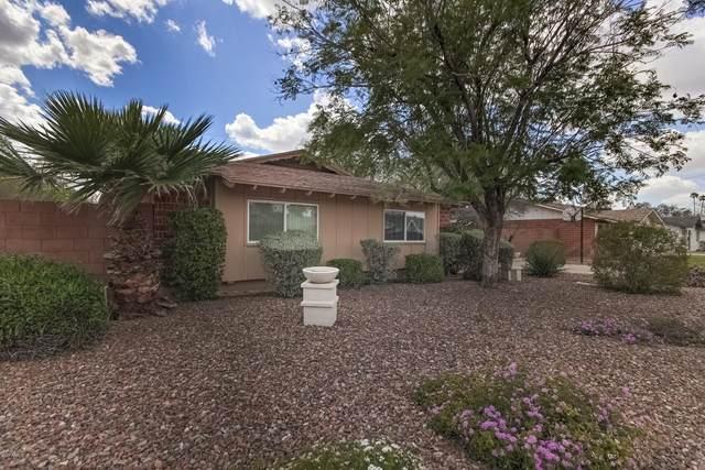 8725 E Terrace Drive, Scottsdale, AZ 85251 (MLS #6058607) :: Lucido Agency