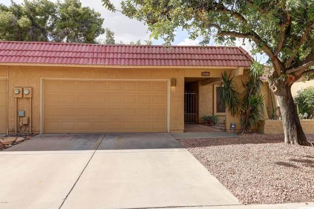 11836 S Tonopah Drive, Phoenix, AZ 85044 (MLS #6058618) :: Relevate   Phoenix