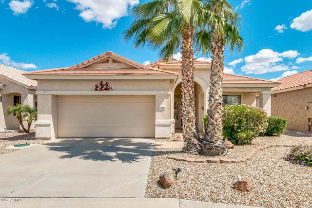 18127 N Fiesta Drive N, Surprise, AZ 85374 (MLS #6058670) :: Long Realty West Valley