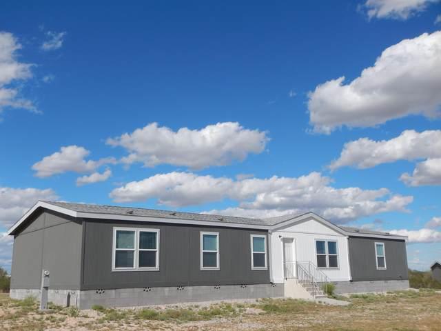 18909 W Roadrunner Road, Wittmann, AZ 85361 (MLS #6058716) :: Brett Tanner Home Selling Team