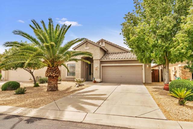 5 E Macaw Court, San Tan Valley, AZ 85143 (MLS #6058756) :: Brett Tanner Home Selling Team