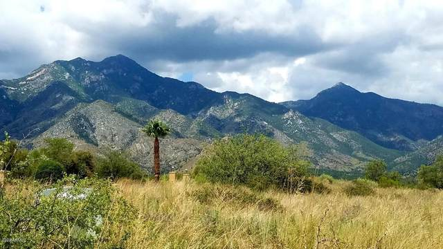 Lot 37 E Lippizan Way, Hereford, AZ 85615 (MLS #6058761) :: The Bill and Cindy Flowers Team