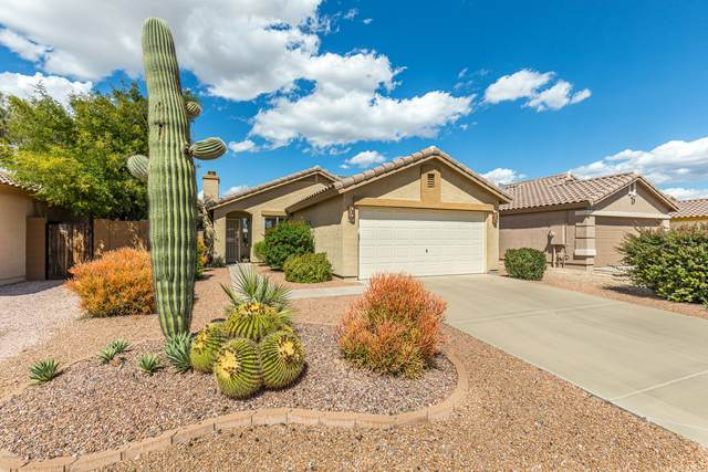 984 E Graham Lane, Apache Junction, AZ 85119 (MLS #6058790) :: The Kenny Klaus Team