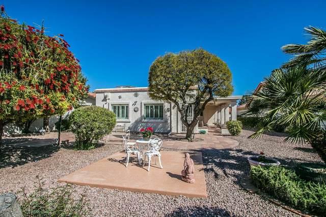 10429 E Chestnut Drive, Sun Lakes, AZ 85248 (MLS #6058810) :: Howe Realty