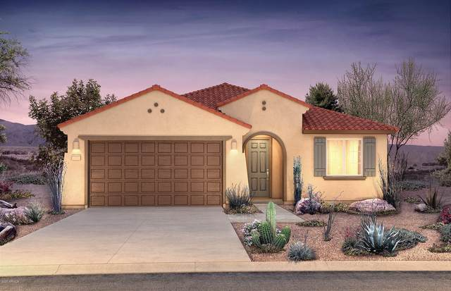 19222 W Morning Glory Drive, Buckeye, AZ 85326 (MLS #6058845) :: Kepple Real Estate Group