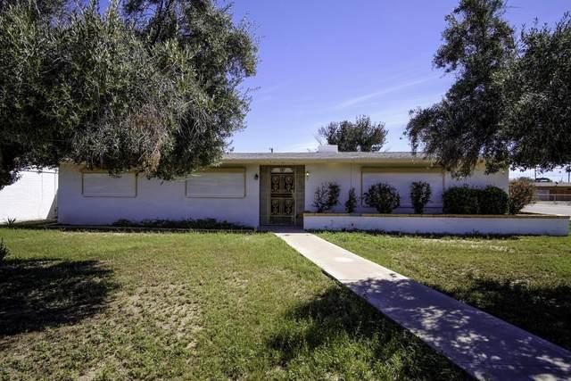 401 N Santa Cruz Avenue, Eloy, AZ 85131 (MLS #6058855) :: Homehelper Consultants