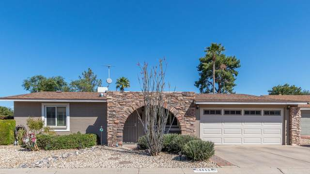 4445 W Cathy Circle, Glendale, AZ 85308 (MLS #6058875) :: Devor Real Estate Associates