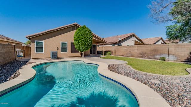 461 W San Angelo Street, Gilbert, AZ 85233 (MLS #6058877) :: Yost Realty Group at RE/MAX Casa Grande