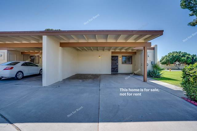 13601 N 24TH Lane, Phoenix, AZ 85029 (MLS #6058884) :: REMAX Professionals