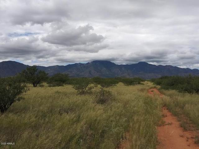 TBD S X  Three Canyons, Hereford, AZ 85615 (MLS #6058910) :: Klaus Team Real Estate Solutions