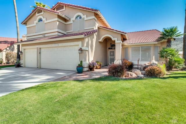 5550 W Rose Garden Lane, Glendale, AZ 85308 (MLS #6058955) :: Lifestyle Partners Team