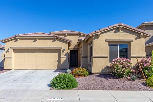 18028 W Statler Street, Surprise, AZ 85388 (MLS #6059005) :: Brett Tanner Home Selling Team