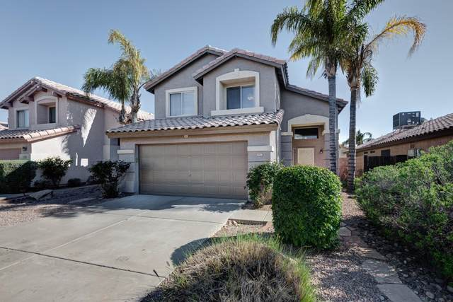 3925 E Wescott Drive, Phoenix, AZ 85050 (MLS #6059034) :: Openshaw Real Estate Group in partnership with The Jesse Herfel Real Estate Group