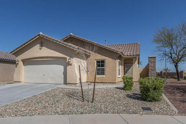 10854 W Woodland Avenue, Avondale, AZ 85323 (MLS #6059125) :: The Daniel Montez Real Estate Group