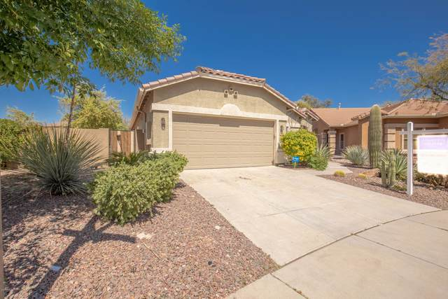 4558 W Stoneman Drive, Phoenix, AZ 85086 (MLS #6059159) :: Conway Real Estate