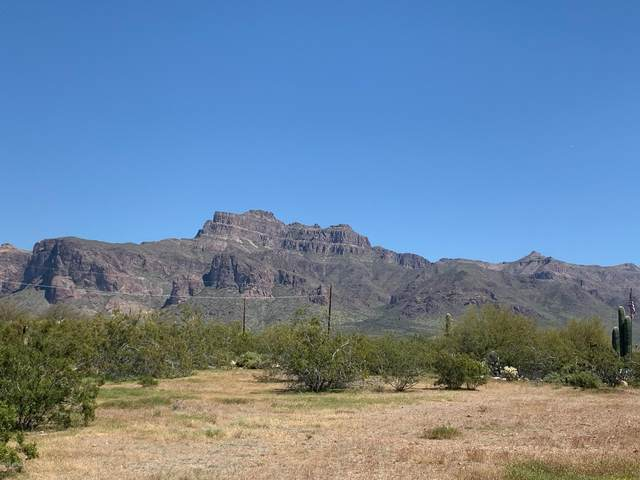 1487 S Mountain View Road, Apache Junction, AZ 85119 (MLS #6059167) :: The Kenny Klaus Team