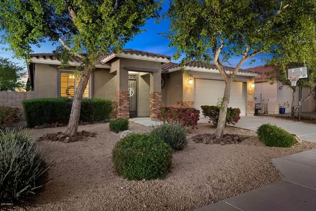 9174 W Hedge Hog Place, Peoria, AZ 85383 (MLS #6059201) :: Howe Realty