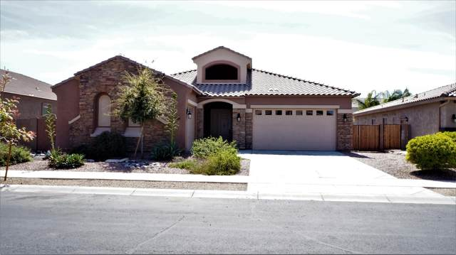 22349 E Via Del Verde, Queen Creek, AZ 85142 (MLS #6059203) :: Lucido Agency