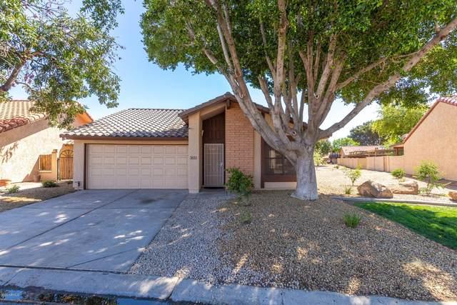 5215 E Coronado Circle, Phoenix, AZ 85044 (MLS #6059239) :: Lux Home Group at  Keller Williams Realty Phoenix