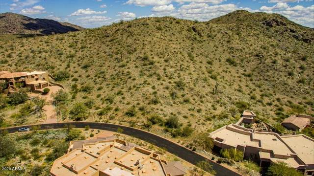 13635 S Canyon Drive, Phoenix, AZ 85048 (MLS #6059244) :: Lux Home Group at  Keller Williams Realty Phoenix