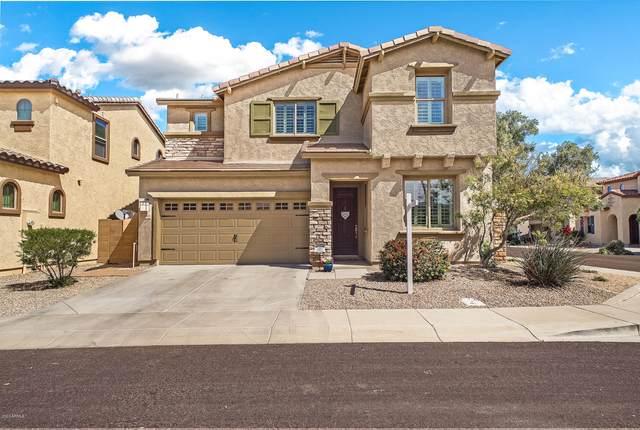 3248 E Citadel Drive, Gilbert, AZ 85298 (MLS #6059252) :: My Home Group