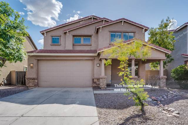 1019 E Nickleback Street, San Tan Valley, AZ 85143 (MLS #6059266) :: NextView Home Professionals, Brokered by eXp Realty