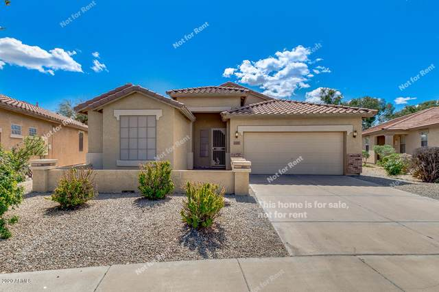21081 E Desert Hills Circle, Queen Creek, AZ 85142 (MLS #6059283) :: Revelation Real Estate