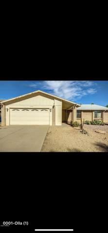 2210 W Olla Circle, Mesa, AZ 85202 (MLS #6059290) :: Klaus Team Real Estate Solutions