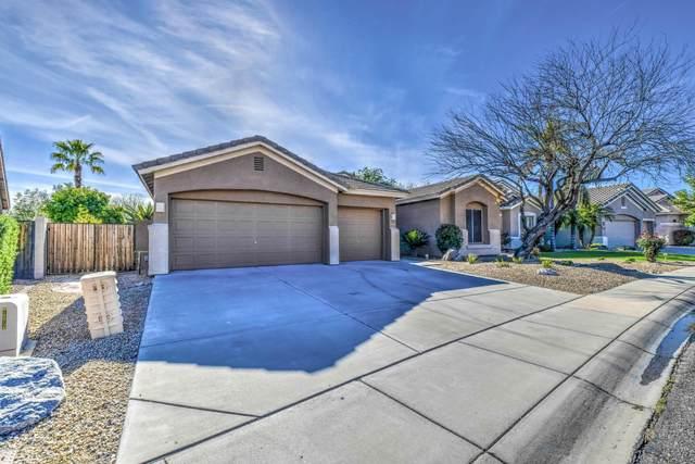 25232 N 42ND Drive, Phoenix, AZ 85083 (MLS #6059301) :: Devor Real Estate Associates
