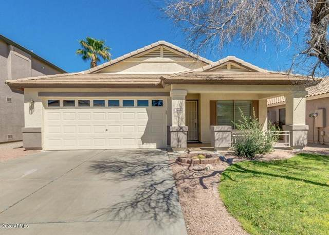 29641 N Blackfoot Daisy Drive, San Tan Valley, AZ 85143 (MLS #6059368) :: NextView Home Professionals, Brokered by eXp Realty