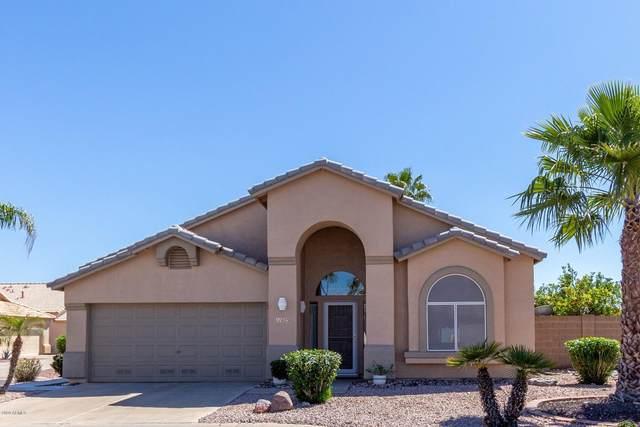 11623 W Lemon Court, Surprise, AZ 85378 (MLS #6059380) :: The Property Partners at eXp Realty