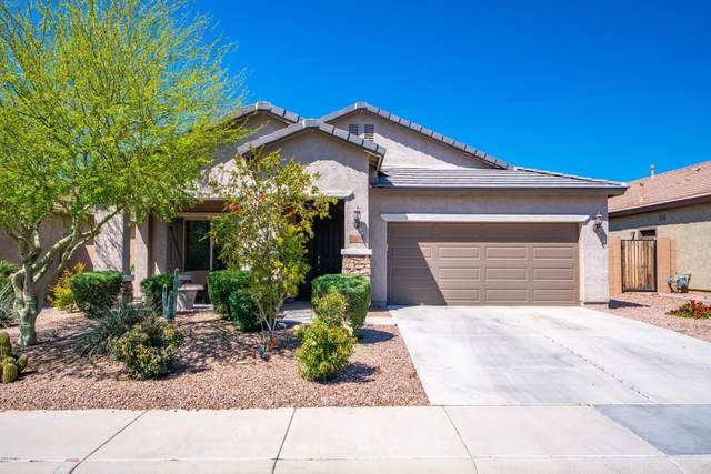 10840 E Thatcher Avenue, Mesa, AZ 85212 (MLS #6059392) :: Revelation Real Estate