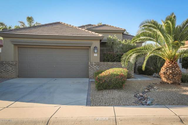 2633 E Calle Del Norte Drive, Gilbert, AZ 85296 (MLS #6059404) :: NextView Home Professionals, Brokered by eXp Realty