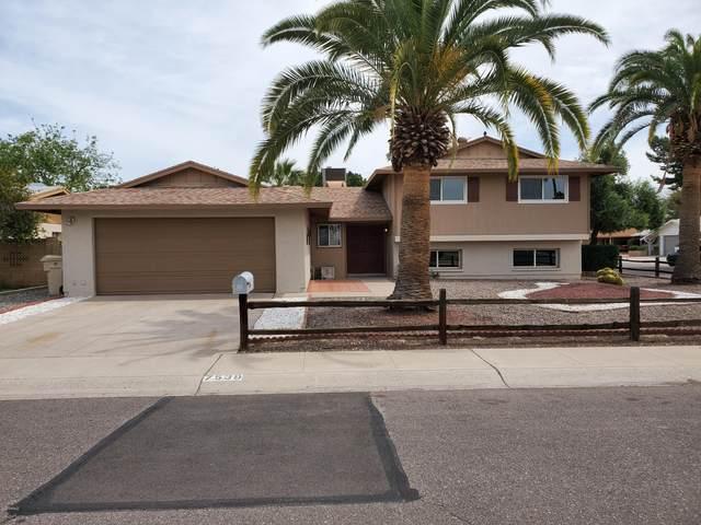 7539 N 50TH Avenue, Glendale, AZ 85301 (MLS #6059468) :: My Home Group