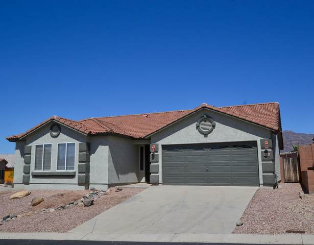 9196 E Cedar Basin Lane, Gold Canyon, AZ 85118 (MLS #6059472) :: The Kenny Klaus Team