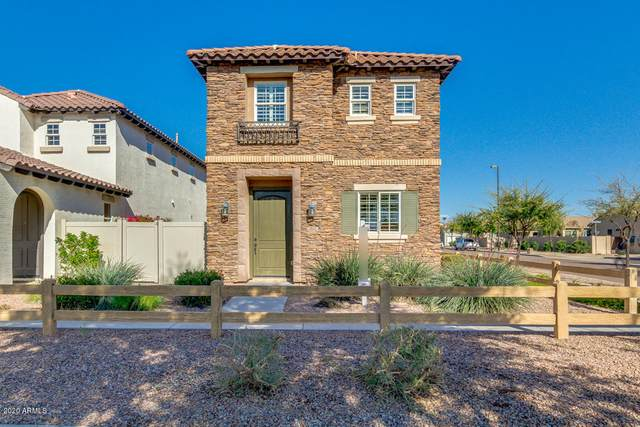 3832 S Verbena Avenue, Gilbert, AZ 85297 (MLS #6059473) :: NextView Home Professionals, Brokered by eXp Realty