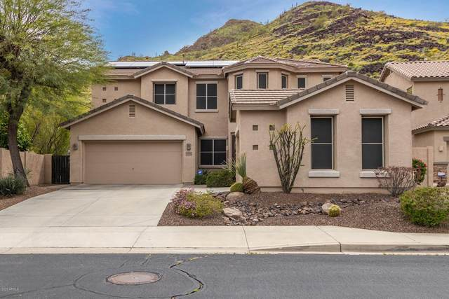 6005 W Spur Drive, Phoenix, AZ 85083 (MLS #6059492) :: NextView Home Professionals, Brokered by eXp Realty